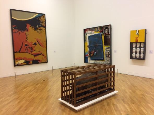 Contemporary Brazilian Art in Pinacoteca, São Paulo
